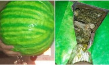 Marijuana Watermelons Smuggled Into America