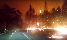 Driving Out Of A Wildfire