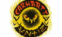 Carhartt x Antiz Skateboards Video