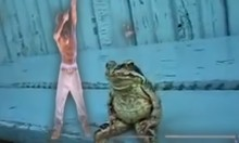 Here's Tupac's Hologram Next To Some Dumb Frog