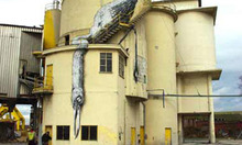 ROA Exhibition