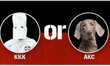 Kennel Club: The Next KKK