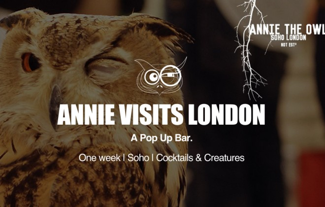 Another Pop-Up Bar In London, Featuring Owls