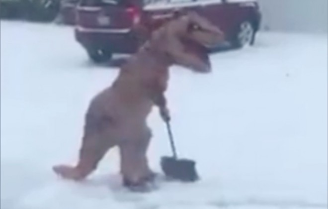 Friendly T-Rex Shovels Snow