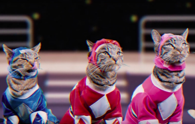 Power Rangers Is Recast With Cats