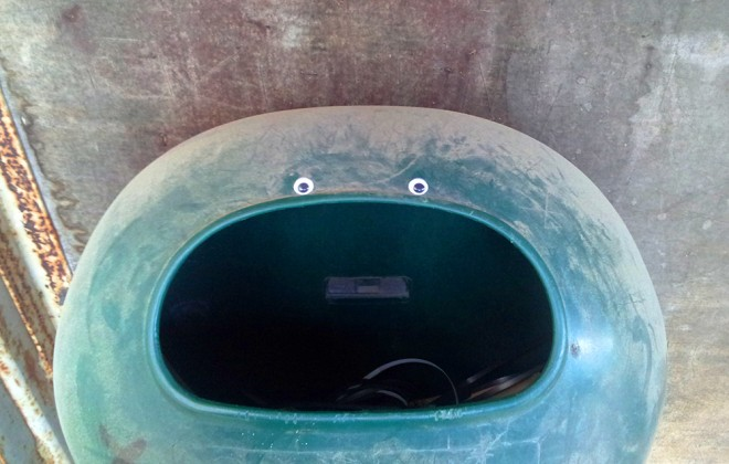 The Rise Of Eyebombing