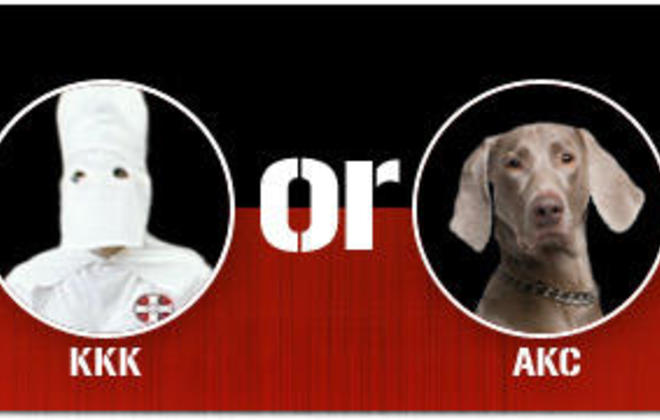 Kennel Club: The Next KKK