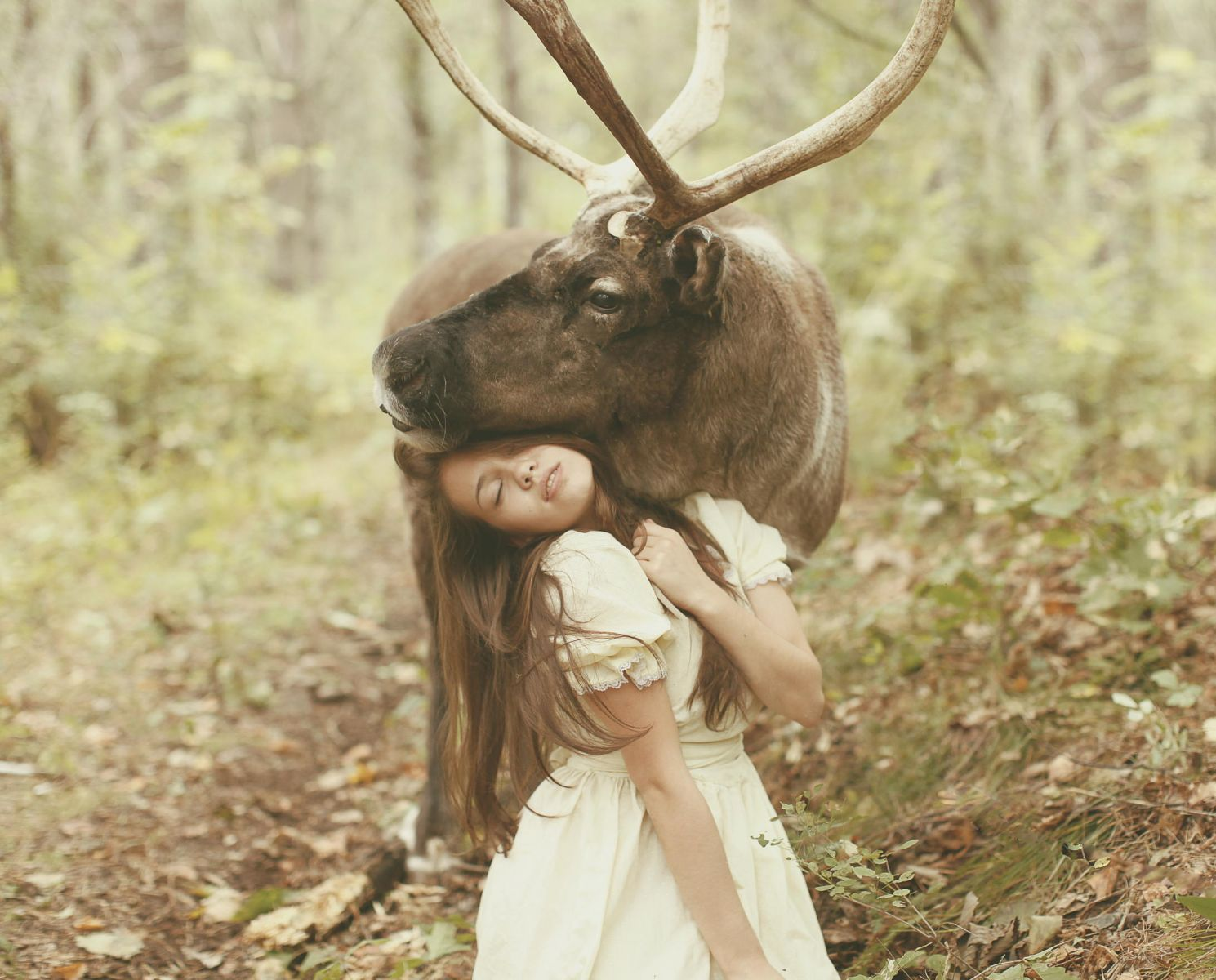 girl fuck animal KATERINA PLOTNIKOVA'S FAIRY TALE PHOTOGRAPHY OF YOUNG WOMEN & DANGEROUS  ANIMALS